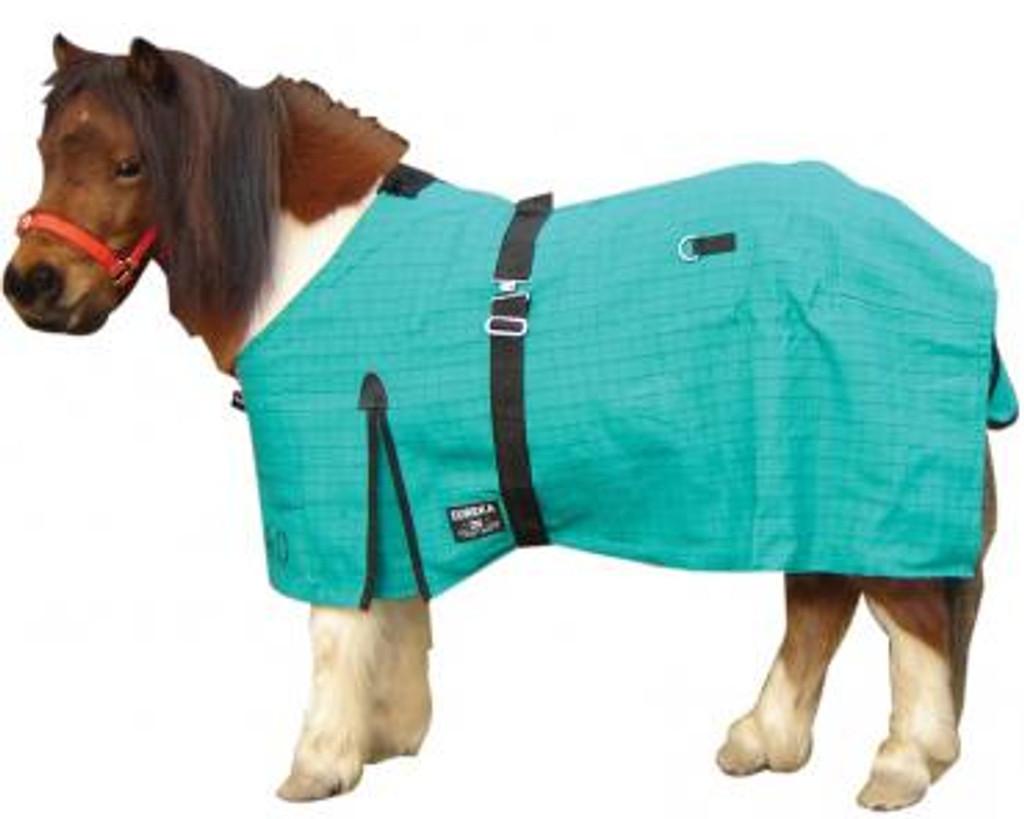 Eureka Miniature Pony Canvas Rug