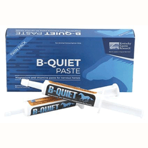 KER B-Quiet Paste (Twin Pack)