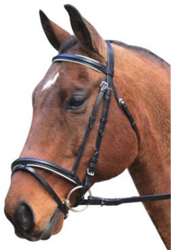 Eureka Eventing Hanovarian Bridle