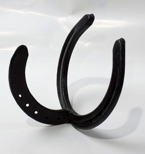 Horse Shoe Wall Hook