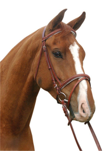 CLEARANCE: McAlister Padded Hanovarian Bridle (Brown/Cob)