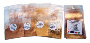 4pk Medium Warm Foundation Colors Sample Kit