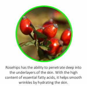 Rosehips has the ability to penetrate deep into the underlayers of the skin. With the high  content of essential fatty acids, it helps smooth wrinkles by hydrating the skin.