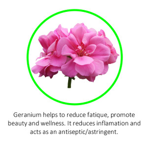 Geranium helps to reduce fatique, promote beauty and wellness. It reduces inflamation and acts as an antiseptic/astringent.