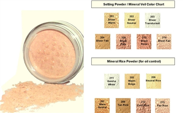 WHOLESALE Natural Mineral Makeup Distributor Starter Kit