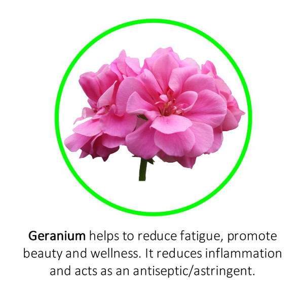 Geranium helps to reduce fatigue, promote beauty and wellness. It reduces inflammation and acts as an antiseptic/astringent.