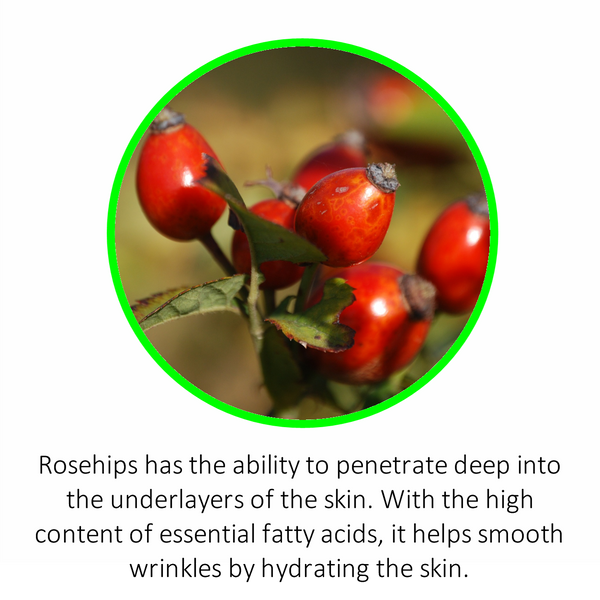 Rosehips has the ability to penetrate deep into the under-layers of the skin. With the high content of essential fatty acids, it helps smooth wrinkles by hydrating the skin.