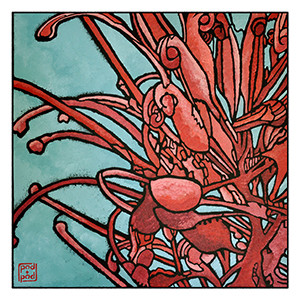 grevillea and sky archival print