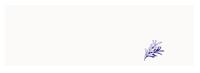 LIFESTYLE NUTRITION LLC