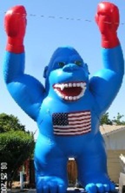 20ft American Kong