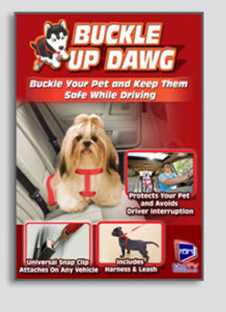 Buckle Up Dawg