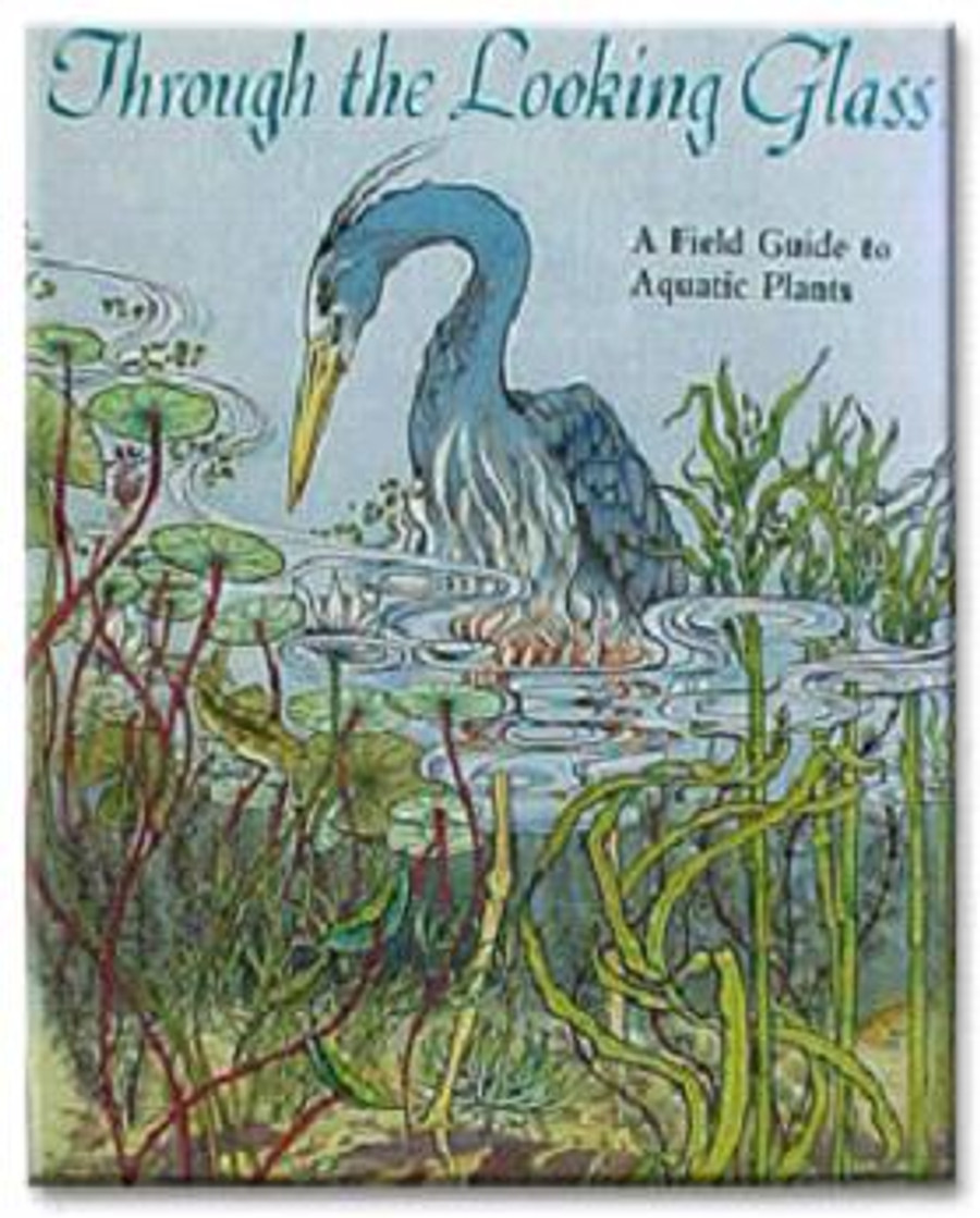 Through the Looking Glass...A Field Guide to Aquatic Plants