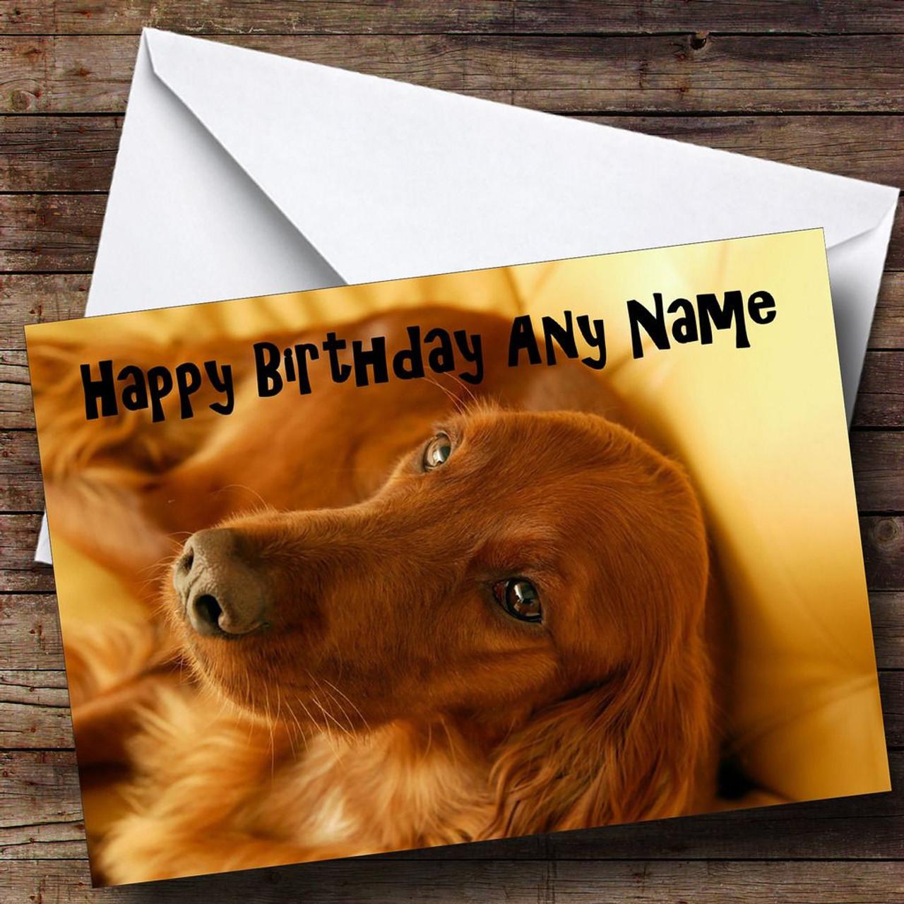 Irish Setter Dog Personalised Birthday Card The Card Zoo