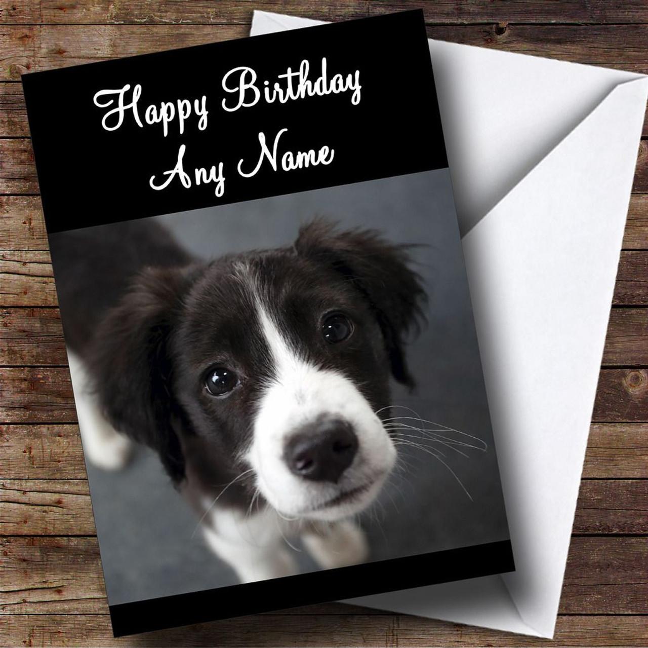 Border collie puppy dog personalised birthday card the card zoo border collie puppy dog personalised birthday card nvjuhfo Choice Image