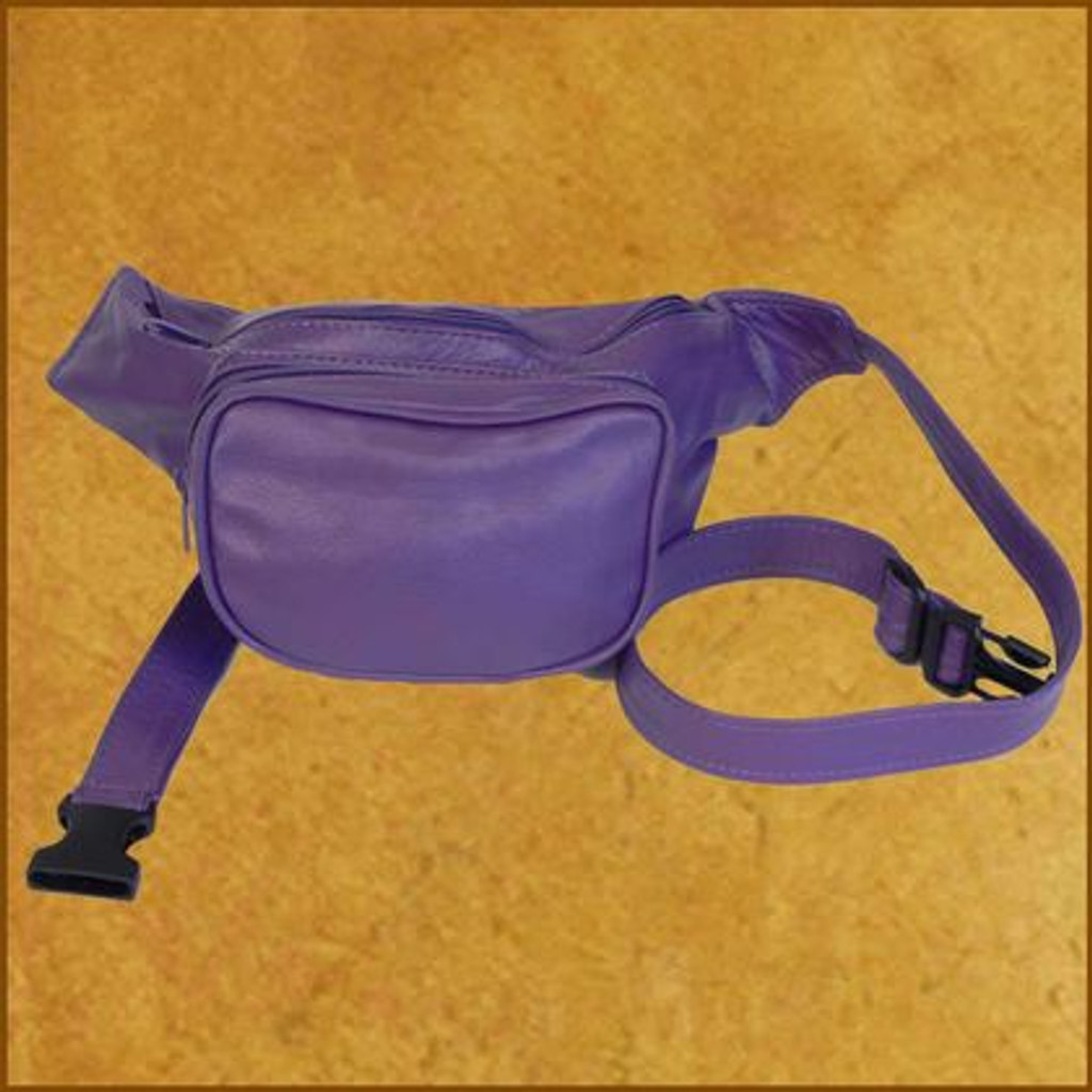 Medium Waist Pack