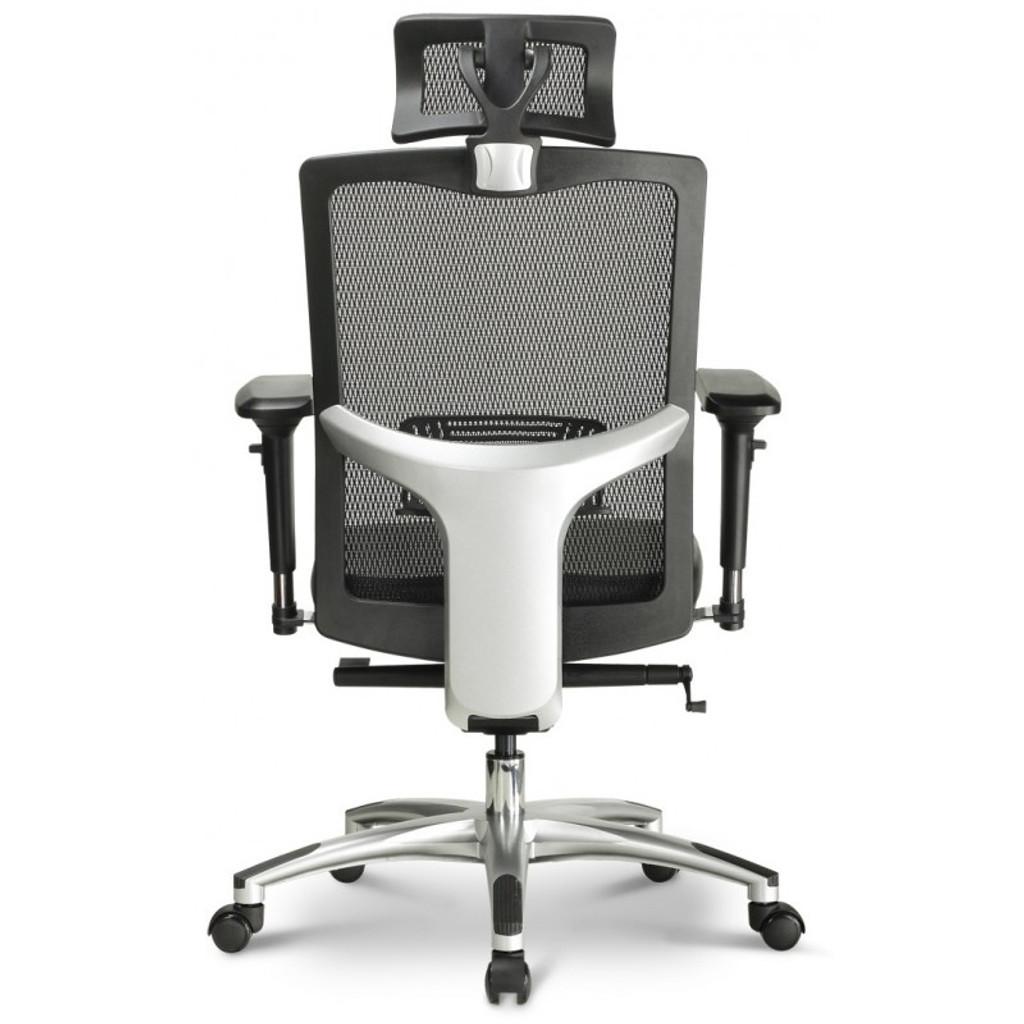 Argento Ergonomic Executive Task Chair
