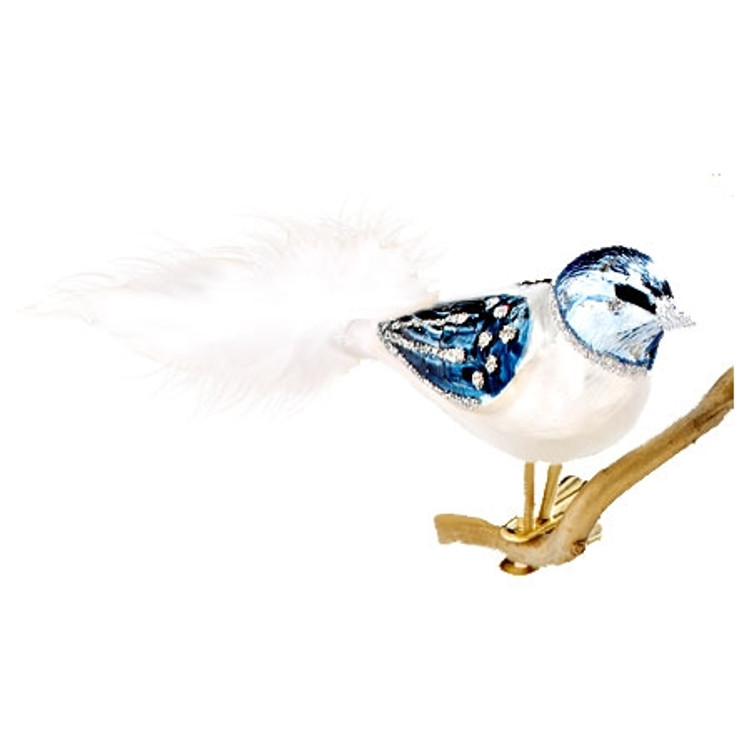 Blue and Silver Bird