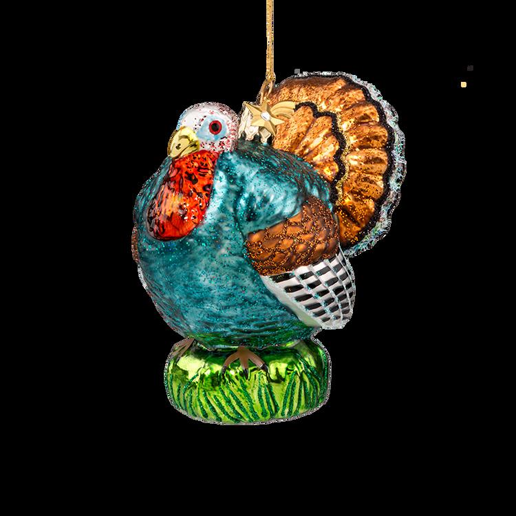 Animal Series Turkey