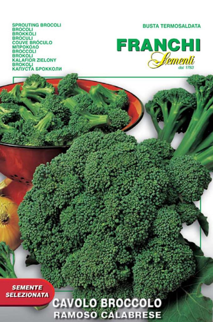 Broccoli of Calabria (25-23)