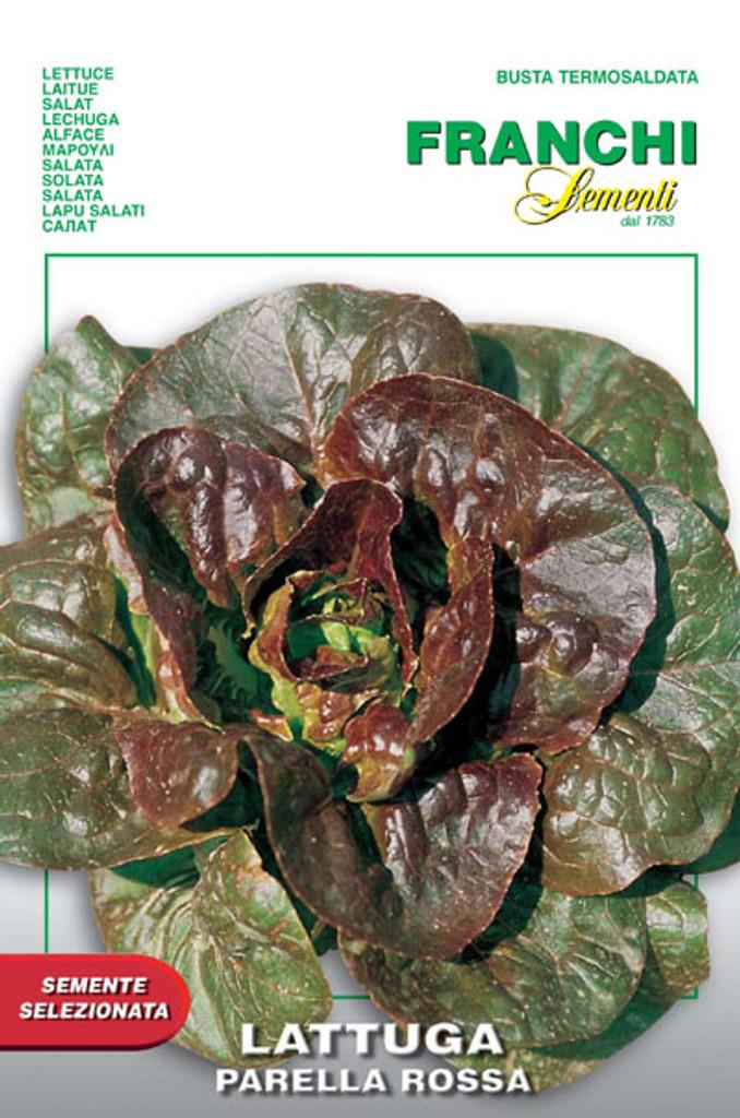 Lettuce Rougette di Montpellier Parella - Parella Rossa (79-36)