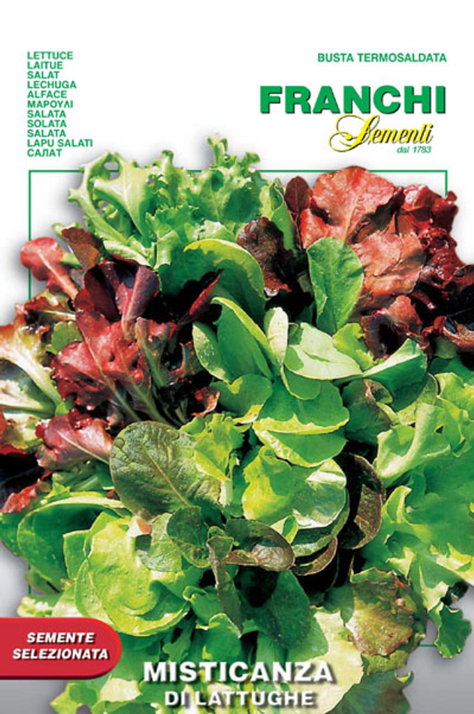 Misticanza All Lettuce  (93-1)