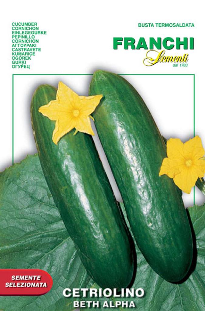 Cucumber Beit (Beth) Alpha (38-16)