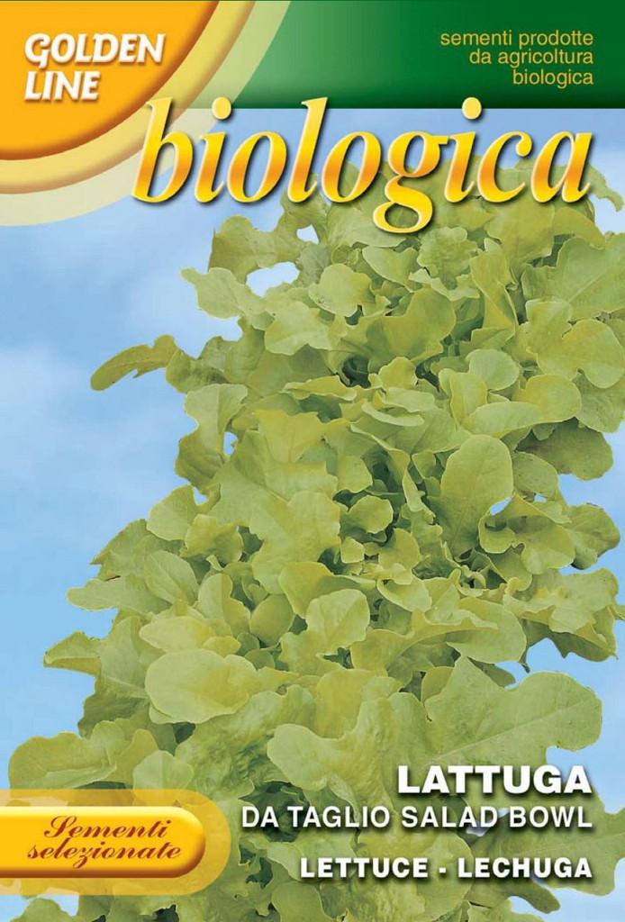 Lettuce Green Salad Bowl -- Certified Organic (78-24B)