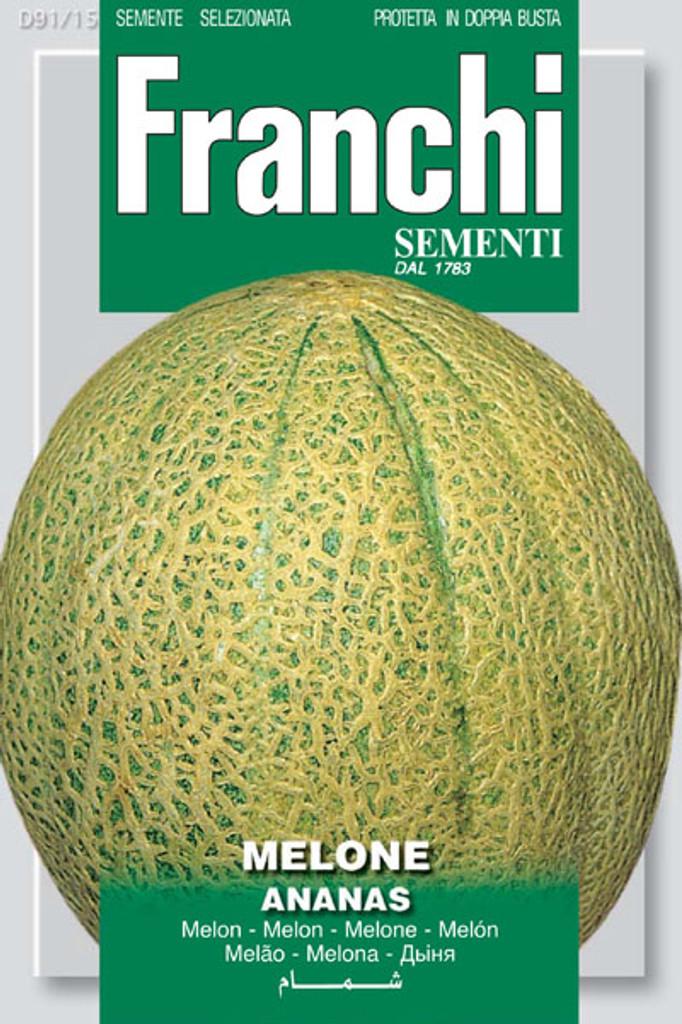Melon Ananas Pineapple Melon (91-15)