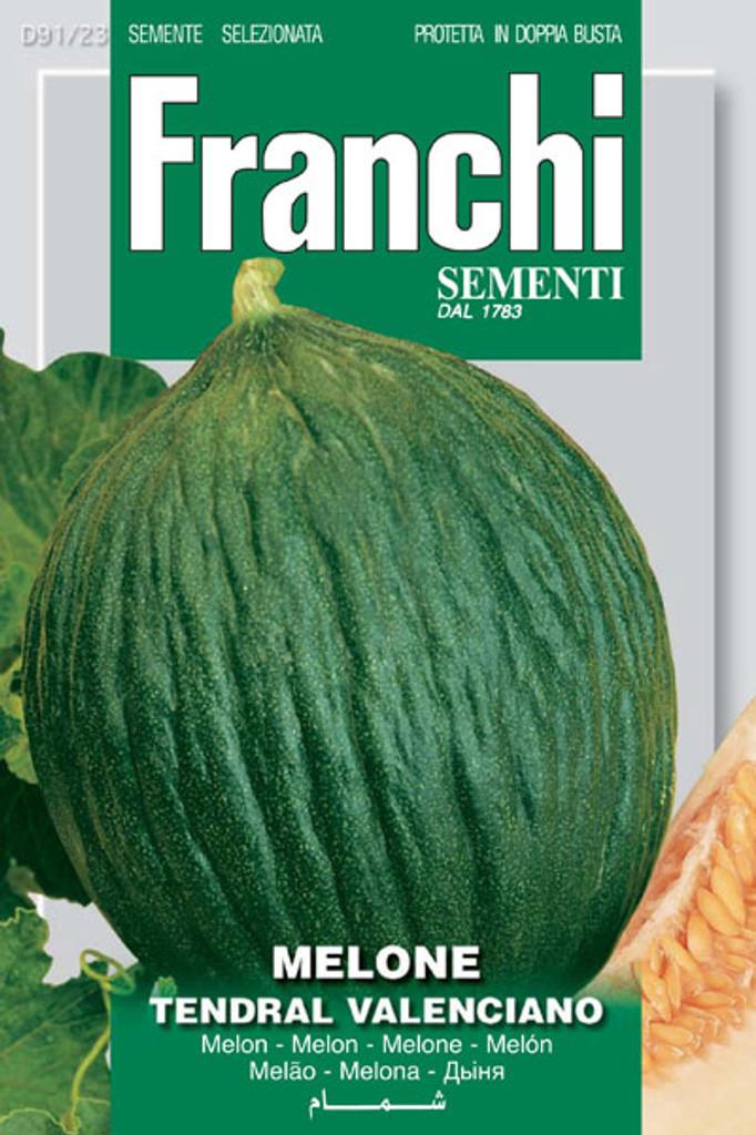 Melon Tendral Valenciano (91-23)