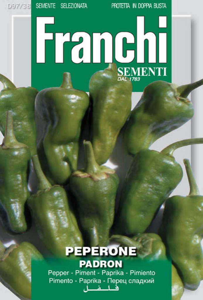Pepper Padron (97-38)