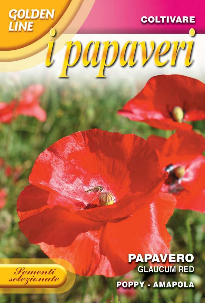 Poppy Glaucum Red (341-4)