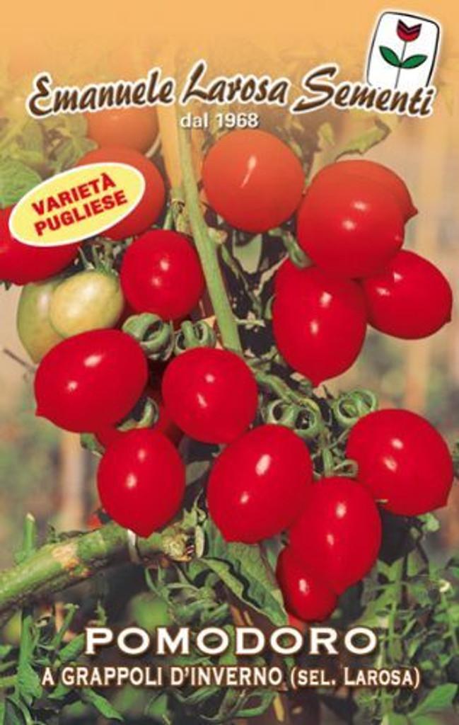 Tomato a Grappoli d'Inverno (106-97)