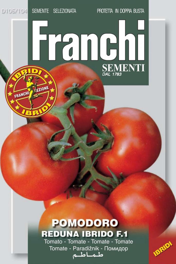 Tomato Reduna F1 (106-104)