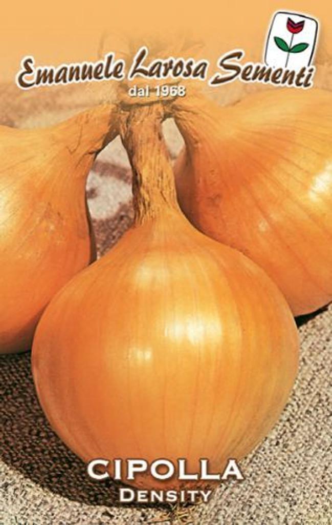 Onion Density / Dorata di Parma -  Certified Organic (43-21B)