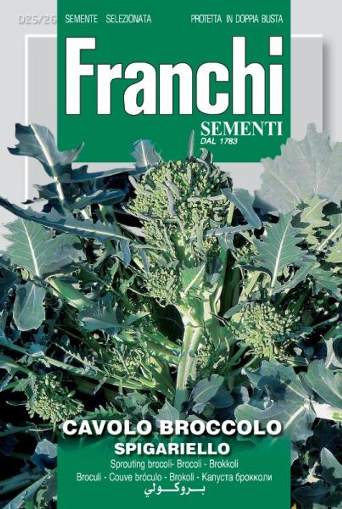Cavolo Broccolo Spigariello Franchi (DBO 25-26)