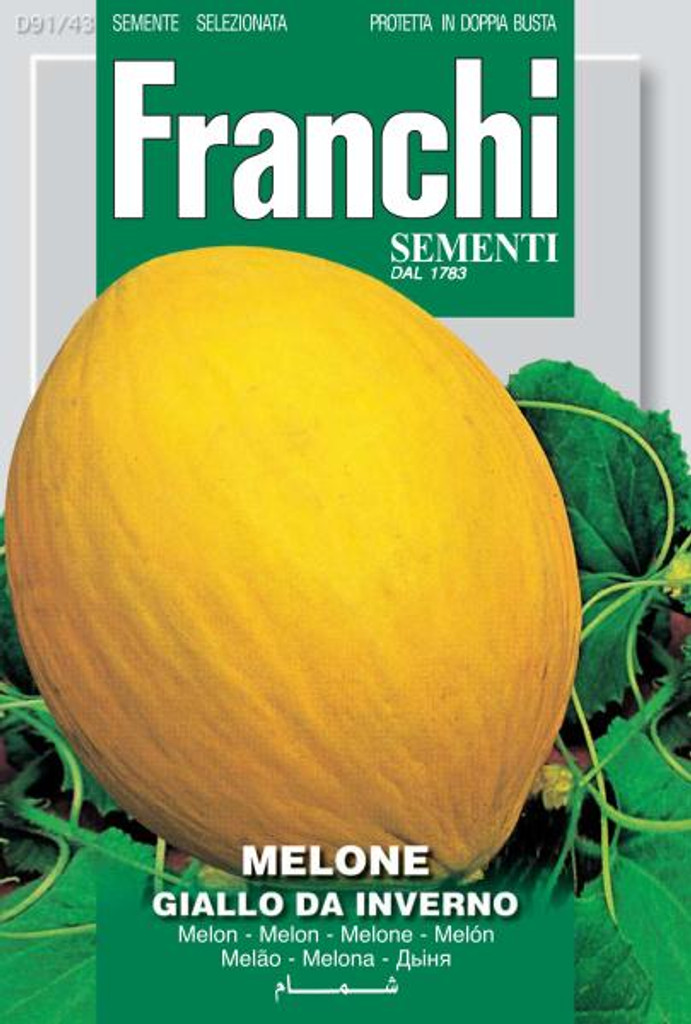 Melone Giallo da Inverno  (91-43)