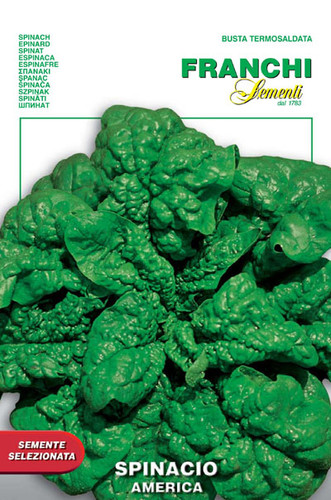 Spinach America (127-18)