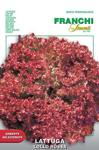 Lettuce Lollo Rossa (78-17)