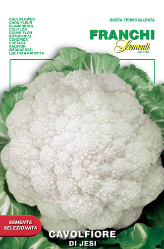 Cauliflower of Jesi (30-15)