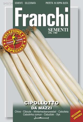 Onion Bunching Cipollotto da Mazzi (42-34)