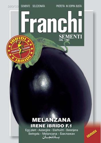Eggplant Irene (90-50)