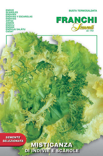 Misticanza Endive and Escarole (93-3)