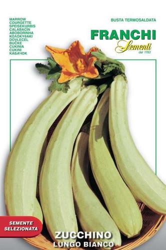 Zucchini - Lungo Bianco di Sicilia (VXO 146-46)