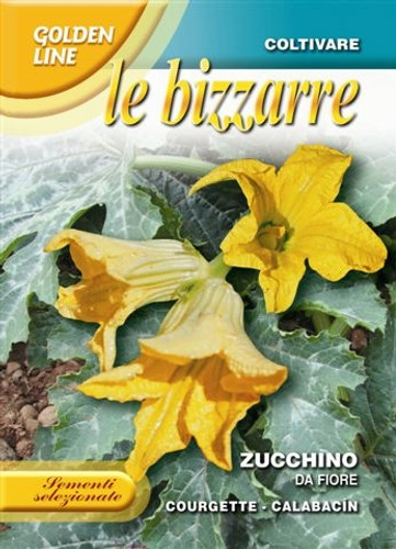 Zucchino da Fiore - Edible Flower (146-57)