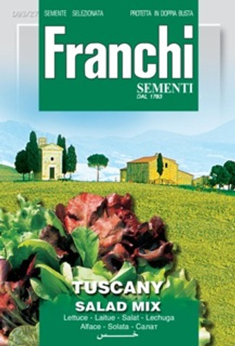 Misticanza Lattughe Toscana (DBO 93-27)