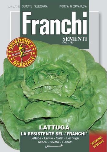 Lettuce Resistente Franchi (79-18)