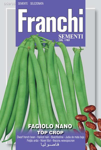 Bush Bean Top Crop (59-36)
