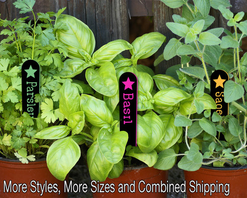 Tapered Herb Garden 06in EFX Colorful Acrylic Stakes