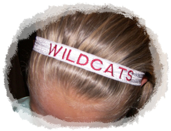 Team Headband  (10)