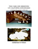 The Care and Breeding of California Kingsnakes - eBook